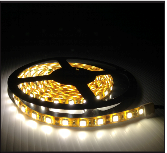 ... Picture Of Indoor / Outdoor LED Strip Lighting ...
